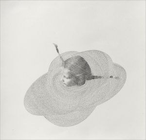 Armida Gandini - Ruff - Graphite and photography transferred on rosaspina paper - cm. 70 x 70 - 2016